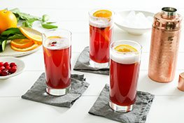 Organic Cranberry Orange Gin Fizz